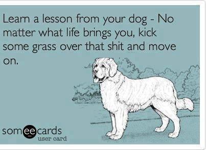Life+lesson_efe1bd_4107764