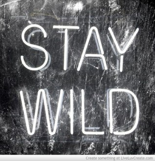 stay_forever_wild_tn-603223
